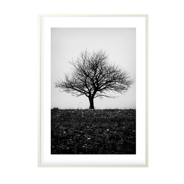 Poster Bleak Tree - 50 x 70 cm