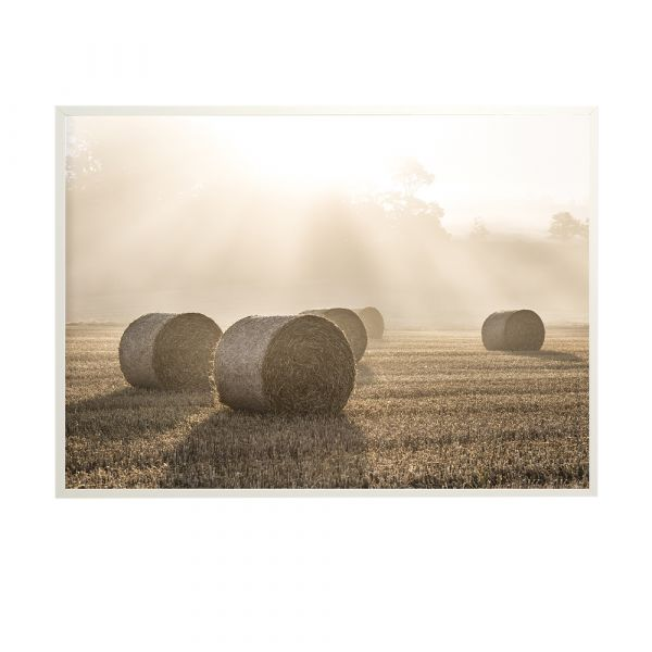 Poster Hay Bales - 50 x 70 cm