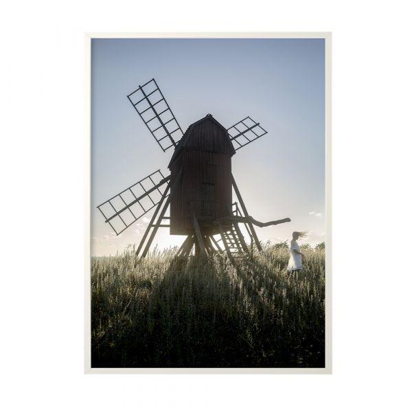 Poster Windmill - 50 x 70 cm