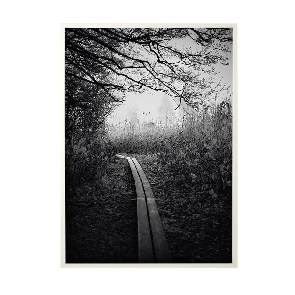 Poster Early Walk - 50 x 70 cm