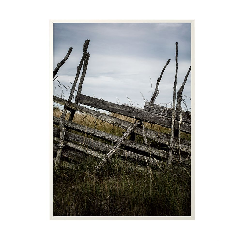 Poster Field Fence - 50 x 70 cm