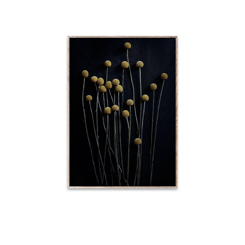 Poster - Still Life 01 - 30x40 cm