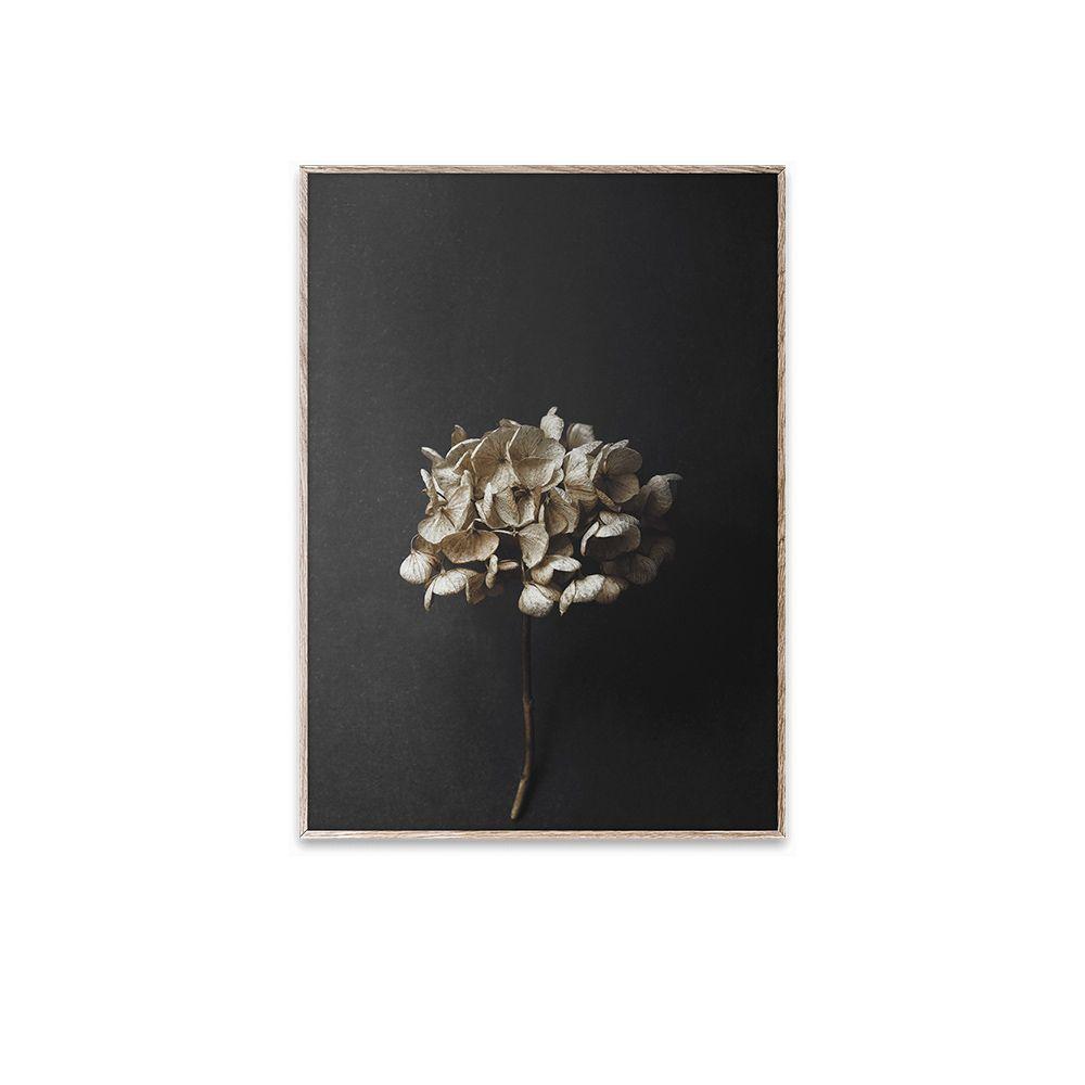 Poster - Still Life 04 - 30x40 cm