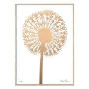 Druck Dandelion - gold/weiß 50x70 cm