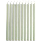 Pencil Kerzen extralang - staubig grün 10 Stk.